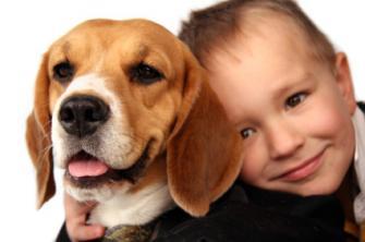 beagle y niño